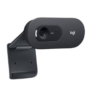 Logitech C505e - Web camera - colour - 720p - fixed focal - audio - USB 960-001385